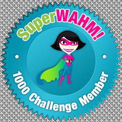 SuperWAHM 1000 Challenge